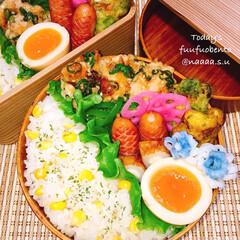 味玉/味卵/とうもろこしの炊き込みご飯/とうもろこしご飯/炊き込みご飯/鶏つくね/... 夫婦弁当➰➰  ネギたっぷりな鶏つくねi…