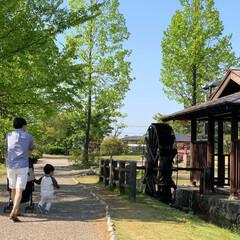 お散歩/フォトコン/おでかけワンショット/はじめてフォト投稿 家族でお散歩へ。 そこには素敵な景色が待…