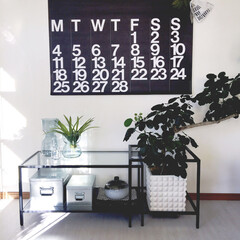 ガラステーブル/観葉植物のある暮らし/観葉植物/カレンダー/ステンディグカレンダー/フラワーベース/... お気に入りの場所♡