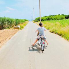 波照間島/サイクリング/日焼け/太陽/海/おでかけワンショット/... 波照間島をサイクリングで一周〜🚴♂️ …