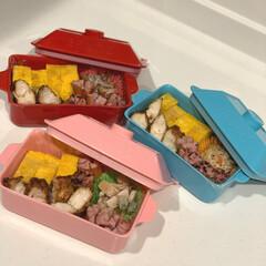 スケーター レンジふわふわ卵焼きメーカー SKATER KFEM1(その他キッチンツール)を使ったクチコミ「♡最近のお弁当♡  子供と旦那用🍱 お弁…」