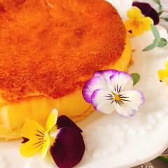暮らしを楽しむ/LIMIAごはんクラブ/手作りおやつ/おうちカフェ/ベイクドチーズケーキ/簡単ケーキ/... ベイクドチーズケーキ  今日は、お友達の…(1枚目)