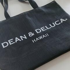 バッグ/ママコーデ/ママファッション/入手困難/hawaii/ハワイ限定/... 前々から気になっていた「DEAN&DEL…