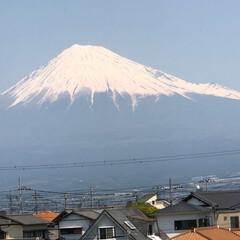 富士山麓/富士山 今回もタイミングを逃しまくってやっと撮れ…