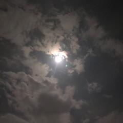 満月の夜空/満月/今日の月 そろそろ寝ようとベット🛌に入ろうとしたら…