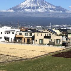 女富士/富士山麓/雪化粧/富士山 今日の富士山🗻  やっと雪化粧❄️した富…