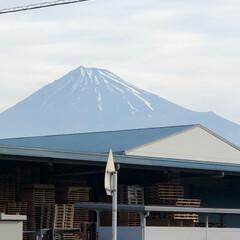富士山麓/富士山 おはようございます☀  今日から1週間、…