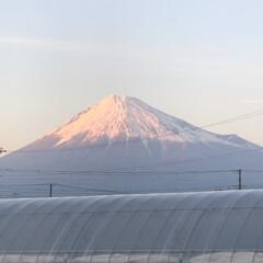 赤富士/富士山麓/富士山 こんばんは⭐️ 久々にやっと赤富士🗻がみ…
