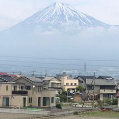 富士山/富士山麓 今朝は見られなかった富士山🗻ですが、  …