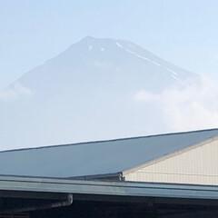 富士山麓/富士山 おはようございます☀  今朝の富士山🗻で…
