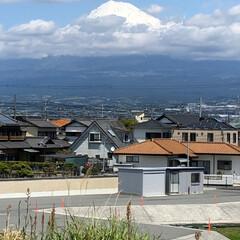 富士山/富士山麓 今日の富士山🗻  雲☁️の中からひょっこ…