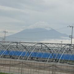 富士山麓/富士山 やっと富士山🗻見れました😍 薄っすらなの…