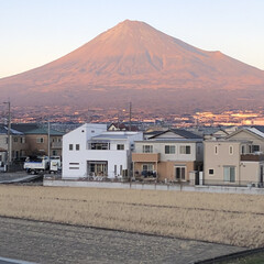 女富士/赤富士/雪化粧/富士山麓/富士山 今日の富士山🗻  帰宅時に、仄かですが夕…
