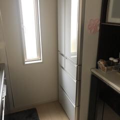 冷蔵庫 会社の後輩に15年間使用した冷蔵庫に別れ…(1枚目)