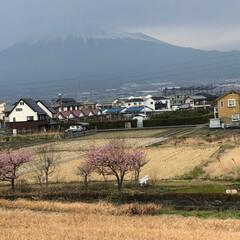 富士山 今日は午後からから雨予報☔️なんで富士山…