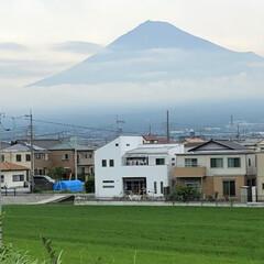 富士山麓/富士山 今日の富士山🗻  ほとんど雪❄️がなくな…