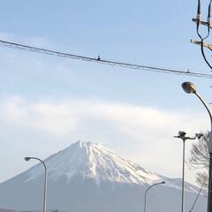 富士山麓/富士山 おはようございます☀  今朝の富士山🗻