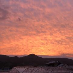 夕焼け風景/夕やけ/夕焼け 夕陽がさして来たので外に出て見ると  空…