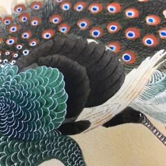 写真映え/写真/インテリア/アート/装飾/住まい/... 小原古邨(1877〜1945)花鳥画の絵…
