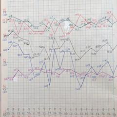 体組成計グラフ 1、2018年1月1日〜、体組成計グラフ…(6枚目)