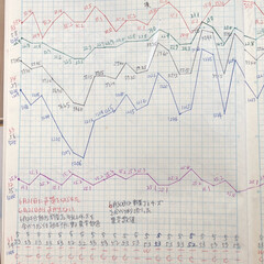 体組成計グラフ 1、2018年1月1日〜、体組成計グラフ…(10枚目)