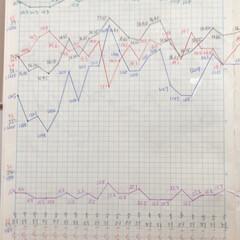 体組成計グラフ 1、2018年1月1日〜、体組成計グラフ…(4枚目)
