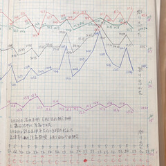 体組成計グラフ 1、2018年1月1日〜、体組成計グラフ…(9枚目)