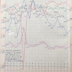 体組成計グラフ 1、2018年1月1日〜、体組成計グラフ…(8枚目)