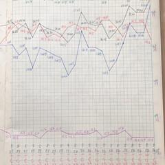 体組成計グラフ 1、2018年1月1日〜、体組成計グラフ…(5枚目)