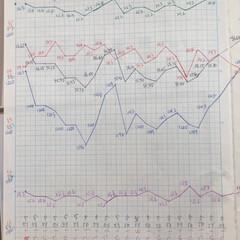 体組成計グラフ 1、2018年1月1日〜、体組成計グラフ…(2枚目)