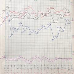 体組成計グラフ 1、2018年1月1日〜、体組成計グラフ…(3枚目)