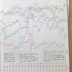 体組成計グラフ 1、2018年1月1日〜、体組成計グラフ…(7枚目)