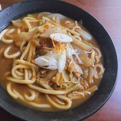 リミアな暮らし/おうちごはん/カレーうどん お昼はカレーうどんなどの麺類率高め。お休…
