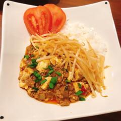 夕ご飯/リミアな暮らし/カレー/麻婆豆腐 麻婆豆腐カレー。もやしもラー油で軽く炒め…