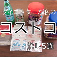 カナダドライ ジンジャーエール コカコーラ ペットボトル 500ml 24本 1箱(炭酸飲料)を使ったクチコミ「コストコ推しグルメ。 ダイエットしながら…」