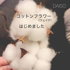 リミアな暮らし/コットンフラワー/インテリア/DAISO DAISOのコットンフラワーがハイクオリ…