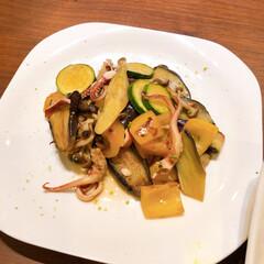 夕ご飯/揚げ浸し/常備菜 イカと野菜の焼き浸し柚子風味!お出しに、…