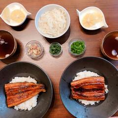 冷やしうどん/うな丼/鰻の蒲焼き/おうちごはん/ランチ うなぎが安くて最近よくたべてます。テレワ…