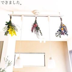 ライティングレール/ダクトレール/ドライフラワー/インテリア/花/購入品 ドライフラワーを飾りました。ライトの周り…(3枚目)