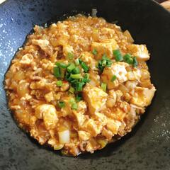 おうちランチ/麻婆豆腐/とろみ上手/おうちごはん/ランチ 麻婆豆腐。無心でトロミづけに混ぜ混ぜして…