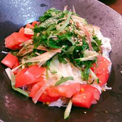 ミョウガ/具沢山素麺/ふたりごはん/おうちごはん/野菜たっぷり 具材たっぷり素麺!ミョウガ、ツナ、トマト…