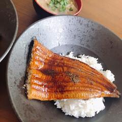 贅沢ごはん/二人暮らし/鰻の蒲焼き/おうちごはん/ランチ スーパーでお安くなってたうなぎ。食べるこ…