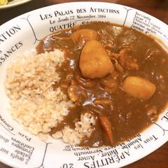 おうちごはん/玄米/圧力鍋/カレーライス 玄米を炊いて食べています。家にこもりがち…