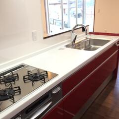 ガスコンロ/パナソニック/キッチン/システムキッチン スタイリッシュな赤いキッチン