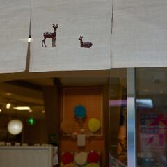 奈良/みあげ/おでかけワンショット 先日、奈良国立博物館へ出かけた時の写真で…
