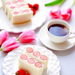 フルーツサンド/朝ごパン/朝ごはん/わたしのごはん/至福のひととき/おやつタイム/... (1枚目)
