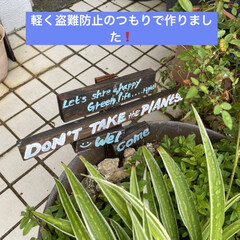 物置/ハンドメイド/DIY 沖縄海洋博ランド💕(5枚目)