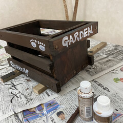 ベランダ/DIY/多肉植物 廃材で作ったガーデニング棚です(1枚目)