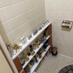 トイレ/DIY トイレの空いたスペースにみんなで棚を作っ…(3枚目)
