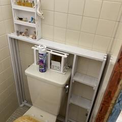 トイレ/DIY トイレの空いたスペースにみんなで棚を作っ…(4枚目)